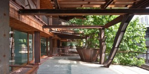 خانه سبز با گیاهان آپارتمانی | سلامت دات لایف راهنمای زندگی سالم