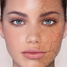 نتیجه تصویری برای انواع پوست