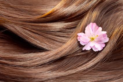 مقاله انواع موی سر را در سلامت دات لایف بخوانید
