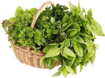 مصرف سبزیجات باعث کاهش ابتلا به آلزایمرمی شود