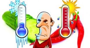 منظور از سردی یا گرمی مواد غذایی چیست؟