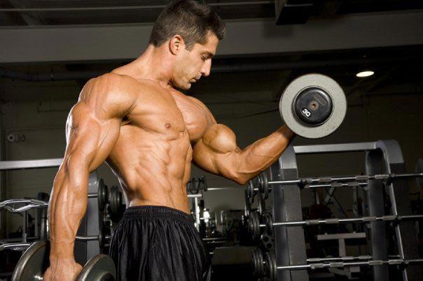 چگونه بدون از دست دادن عضلات وزن کم کنید