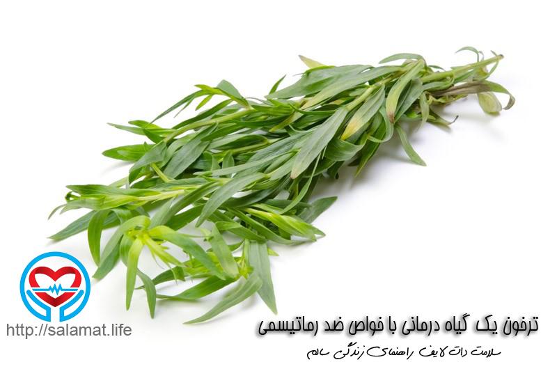 ترخون یک گیاه درمانی با خواص ضد رماتیسمی