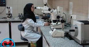 تشخیص جنسیت جنین در هفته هفتم با نوعی از آزمایش خون جدید | سلامت دات لایف