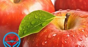 خواص مواد غذایی | سلامت دات لایف راهنمای زندگی سالم