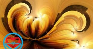 زیبایی شناسی در ادبیات | سلامت دات لایف راهنمای زندگی سالم