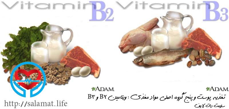 ویتامین B2 و B3 | سلامت دات لایف راهنمای زندگی سالم