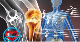 آرتروز مفاصل بدن | سلامت دات لایف راهنمای زندگی سالم