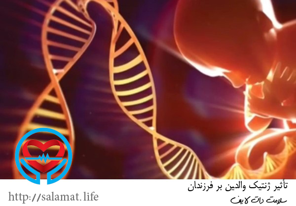 تأثیر ژنتیک والدین بر فرزندان   سلامت دات لایف راهنمای زندگی سالم