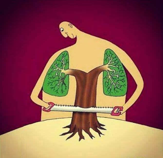 کاریکاتور از بین بردن ریه ها و طبیعت
