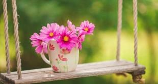 حفظ سلامتی در بهار