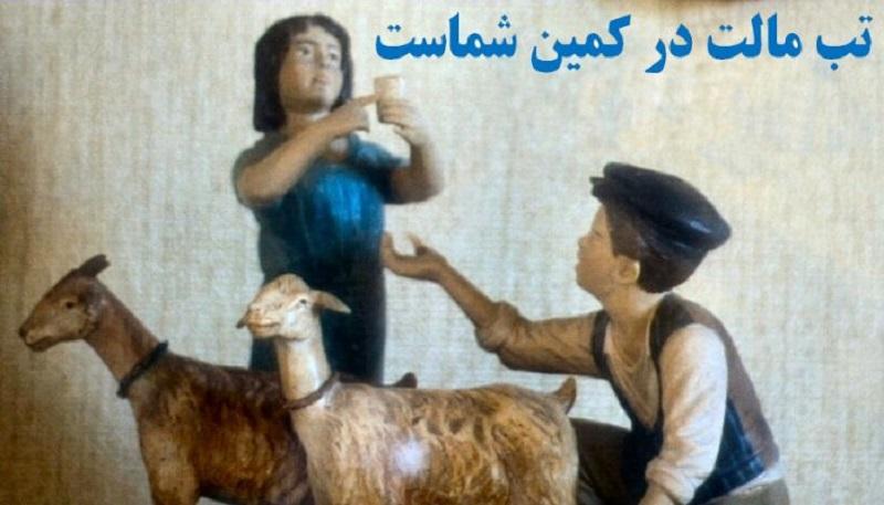 هشدار وزارت بهداشت در مورد تب مالت