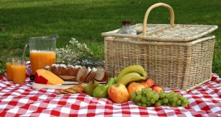 هضم غذا در هنگام سفر