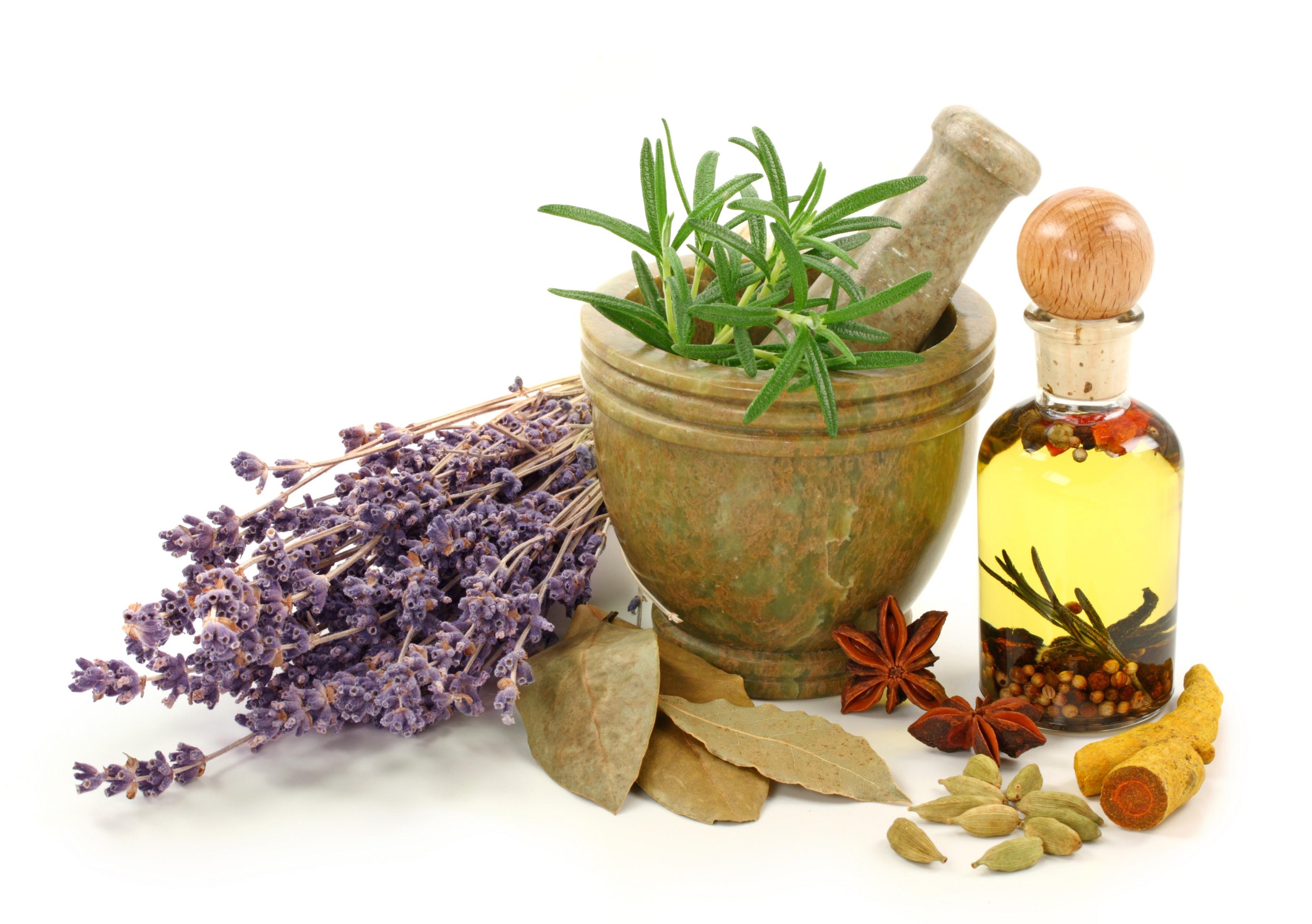 گیاهان دارویی مفید برای معده