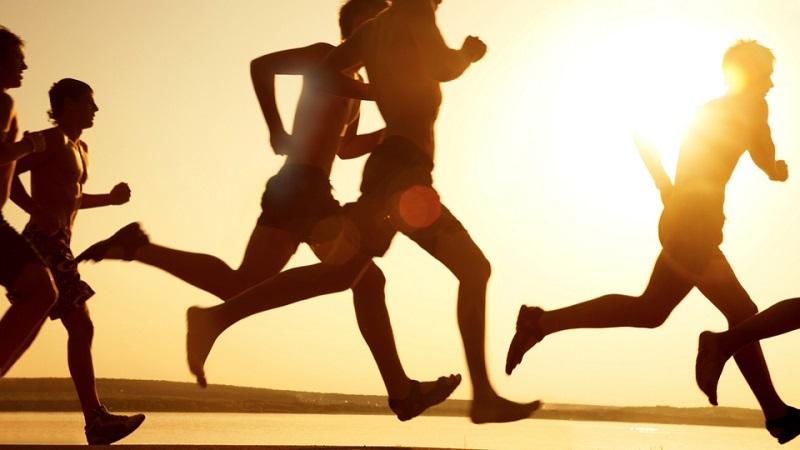 قانون های تمرینی ورزشکاران
