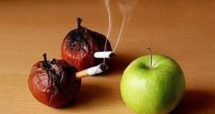 گرفتاری نوجوانان در دام مواد مخدر