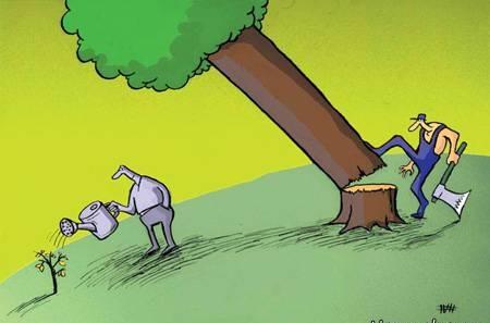 کاریکاتور قطع درختان
