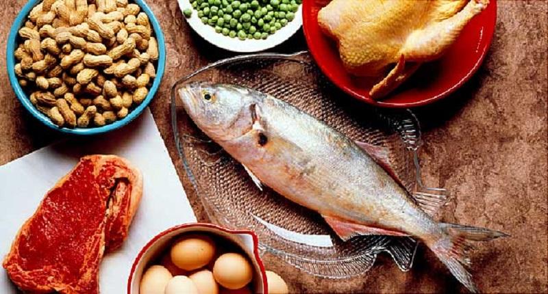 اهمیت حضور پروتئین در رژیم غذایی