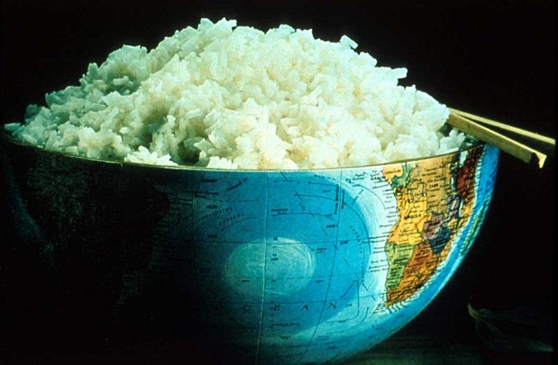 برنج آبکش و کته ای