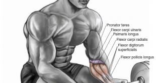 wrist curl | تقویت عضلات ساعد