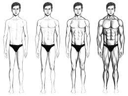برنامه تمرینی تیپ های بدنی