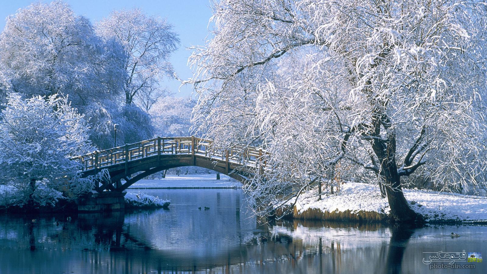 تدابیر غذایی فصل زمستان از دیدگاه طب سنتی