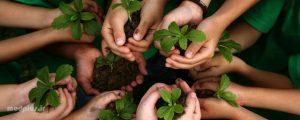 ارتباط با طبیعت | سلامت دات لایف