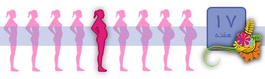 هفته هفدهم بارداری و نکاتی که باید بدانید