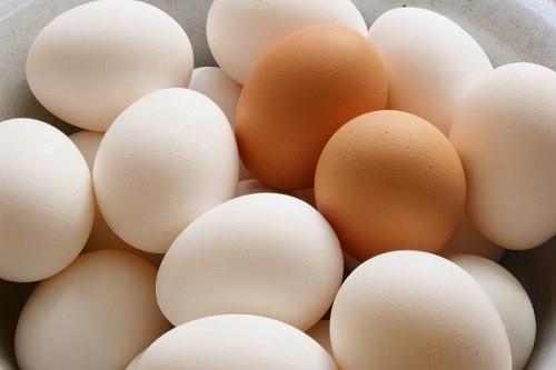 پروتئین کم چرب برای بیماران شیمی درمانی