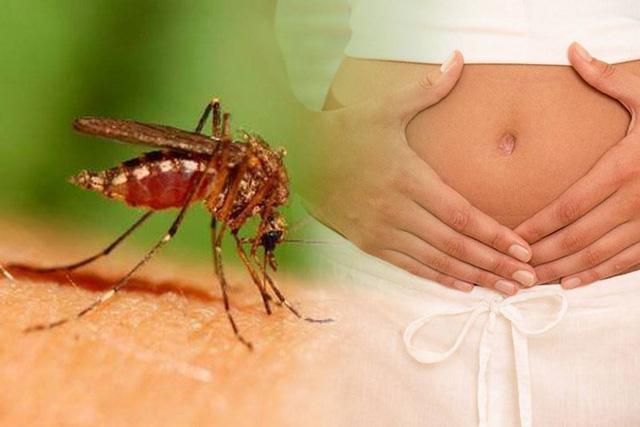 درمان و پیشگیری ویروس زیکا در بارداری